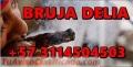 SOMETO AMARRO A TU SER AMADO SIN HACERLE DAÑO +573114504503 LLAMA YA