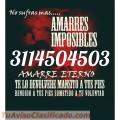 MAESTRA DELIA ESPECIALISTA EN AMARRES Y DOBLEGO +573114504503 LLAMA YA